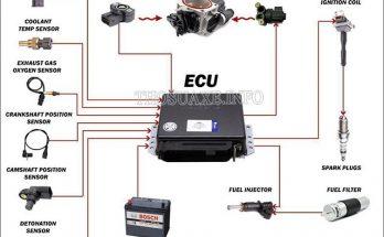 Sơ đồ cấu tạo và nguyên lý hoạt động của ECU