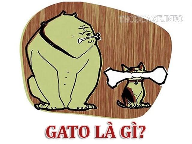 Tìm hiểu GATO có ý nghĩa gì?