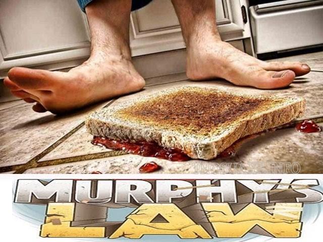 Nội dung định luật Murphy có khiến bạn thích thú?
