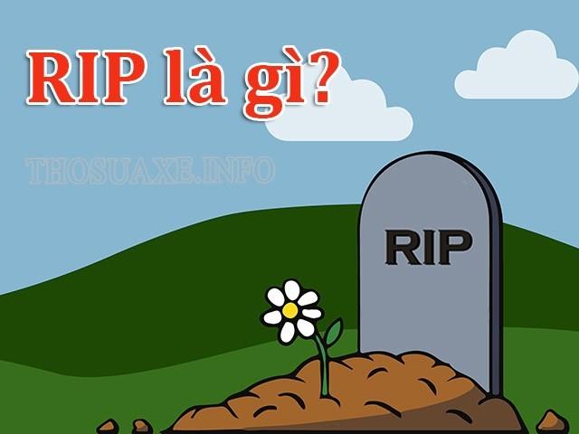 R.I.P là viết tắt của từ nào? RIP nghĩa là gì?
