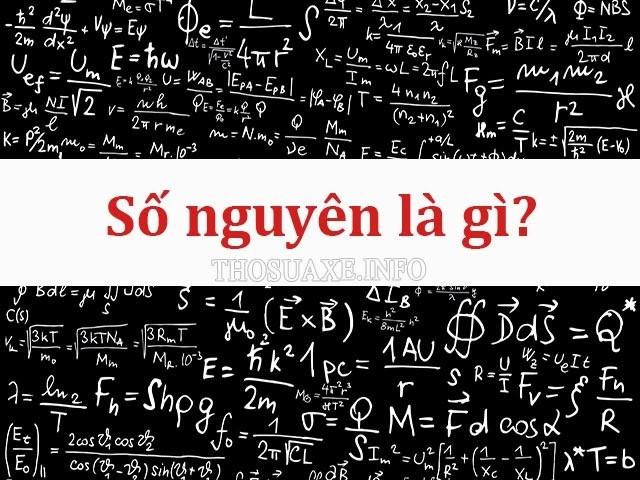Định nghĩa, tính chất của số nguyên là gì?