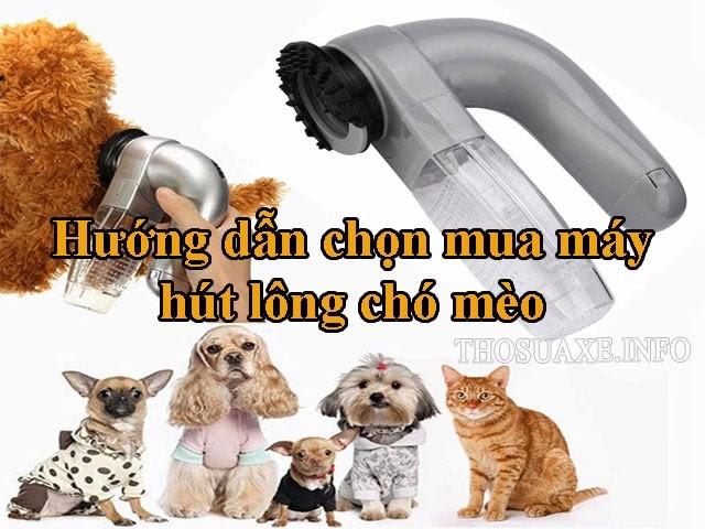 Cách chọn mua máy hút bụi lông chó mèo